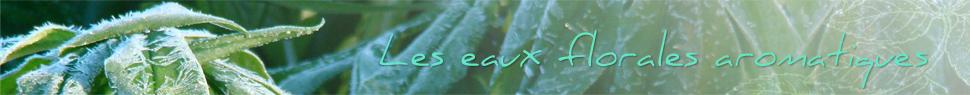 Eaux florales aromatiques