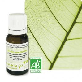 Huiles essentielles Eucalyptus à fl. multiples, à cryptone Bio 10 ml