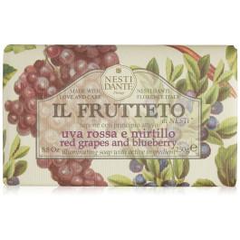 Savon Nesti Dante Il frutteto Raisin & Mirtille