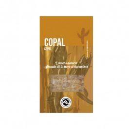 Résine Copal