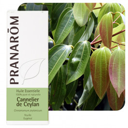 Huile essentielle Cannelier de Ceylan feuille Pranarom