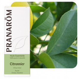 Huile essentielle Citronnier feuille Pranarom