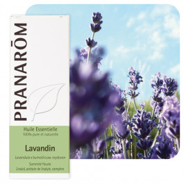 Huile essentielle Lavandin clone reydovan Pranarom
