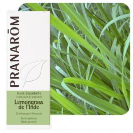 Lemongrass de l'Inde