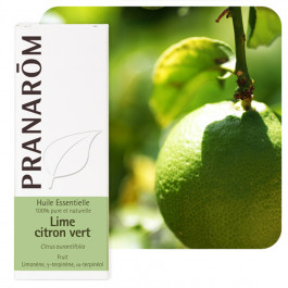 Lime - citron vert