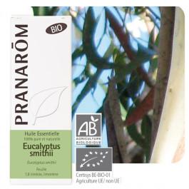 Eucalyptus smithii Bio