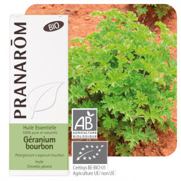 Géranium bourbon Bio