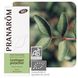 Lentisque pistachier Bio