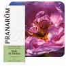 Huile essentielle Rose de Damas Pranarom
